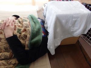 Ibutsu